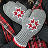Embroidered Tunisian Mittens
